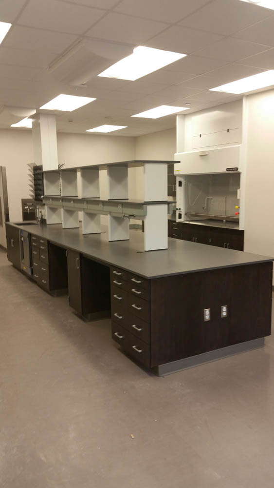 Fixed Wood Laboratory Casework With Reagent Racks